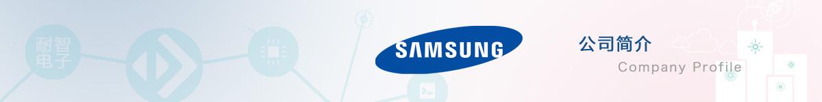 三星半导体(Samsung)公司介绍